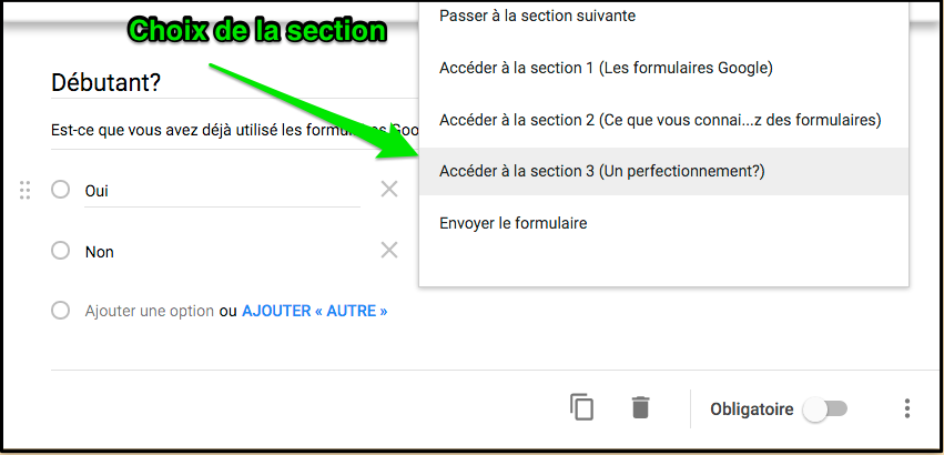 https://sites.google.com/a/csimple.org/comment/google-apps/google-formulaire-1/cheminement-conditionnel/Choix_perfectionnement.png