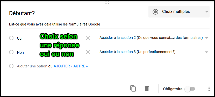 https://sites.google.com/a/csimple.org/comment/google-apps/google-formulaire-1/cheminement-conditionnel/Choix_oui_et_non.png