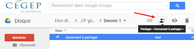 https://sites.google.com/a/csimple.org/comment/google-apps/google-drive/partager-un-document/gDrive%20-%20Partage%20c.png